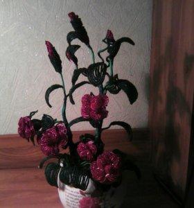 Маленький куст роз