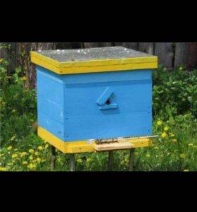 Пчелиные ящики б/у