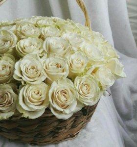 Букет 65 роз