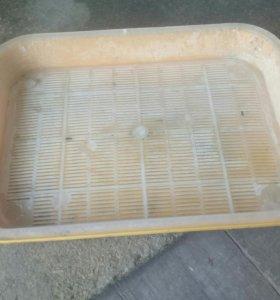 Кошачий латок