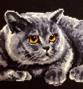 Вышивка крестом британский кот