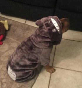 Костюм для собаки весом 3-4 кг