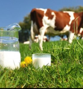 Молоко 40 р за литр