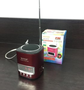 Колонка mini Радио MP3 FM Портативная Wster
