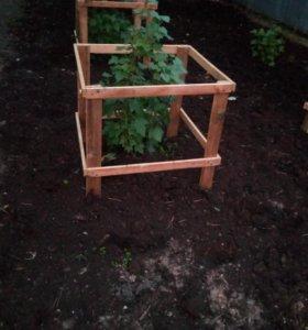 Ограда для смородины