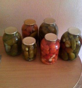 Огурцы, помидоры (домашние)