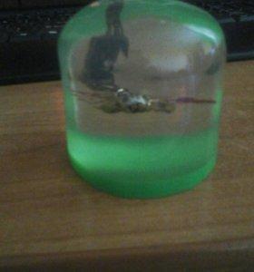 Сувенир с засушенным скорпион