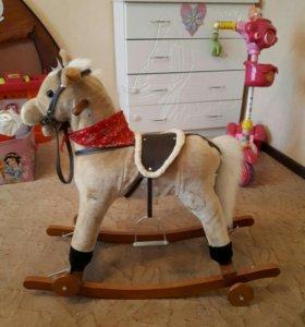 Лошадка качалка-каталка.