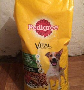 """Корм для собак """"Pedigree"""""""