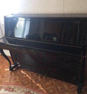 Пианино Сура-2