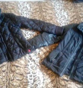 Куртки esprit и geox