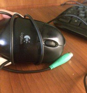 Компьютерная мышь.