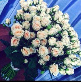 Кустовая роза, 50 см, 50 в букете