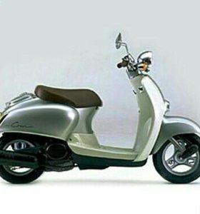 Продам мопед Honda Giorne Crea