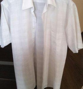 Рубашка Mikele placido