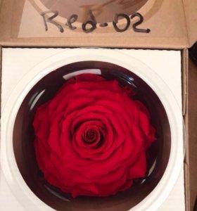 Розы в стеклянной колбе