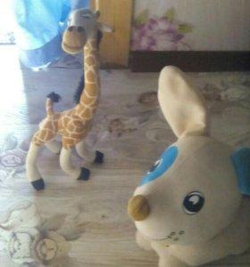 Щенок, жираф