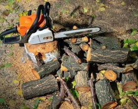 Спил деревьев, обрезка веток, уход за садом