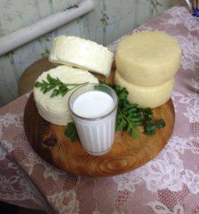 Козье молоко от породистых коз без запаха. Сыр