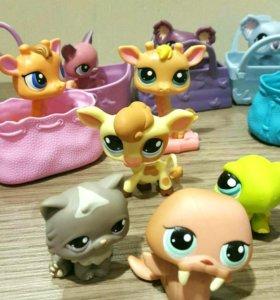 Pet shops игрушки