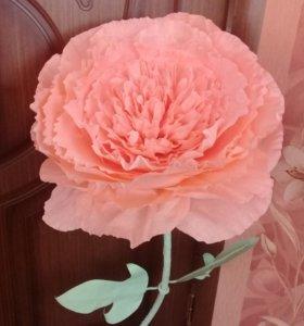 Ростовые цветы. Большие цветы из бумаги