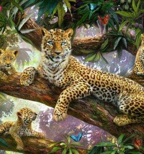 Картина по номерам- семья леопардов