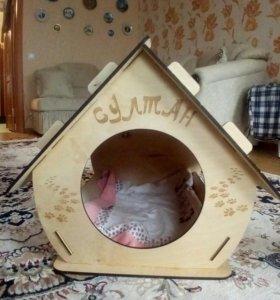 Домик для средней собачки или для большого кота