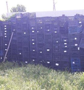 Пласмасовые ящики