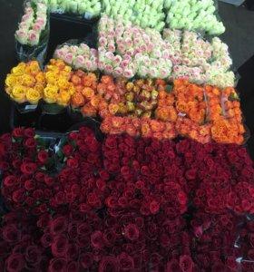 Розы Голландия ❗️✅