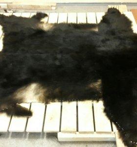 Ковёр медведь