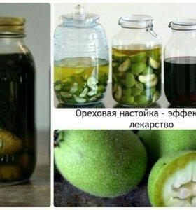Зеленый грецкий орех лекарь