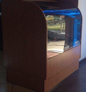 Шкафы / витрины