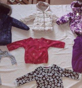 Куртка, кофта, майка, платье, леггинсы, сарафан