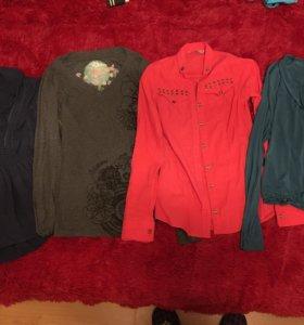 Рубашки, кофты, блузки