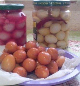 Продаю копченные и маринованные яйца перепелов