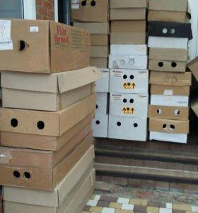 Коробки из под цветов картон