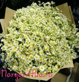 Букет ромашек, букет цветов, ромашки