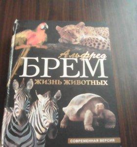 Энциклопедия про животных. 960 л