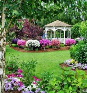 Работы по саду в любой сложности