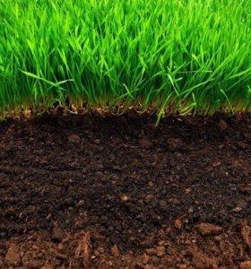 Земля грунт, глина, чернозём, перегной