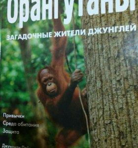 "Книга ""Орангутаны"""