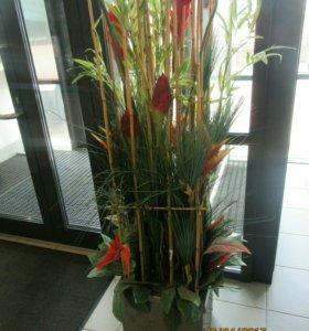 Декоративные растения. Искусственные.