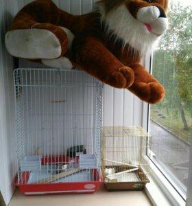Клетки для попугая и подарочек львенок.