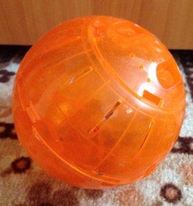 Мяч для хомяков