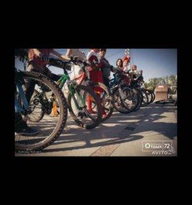 Прокат велосипедов в Тюмени