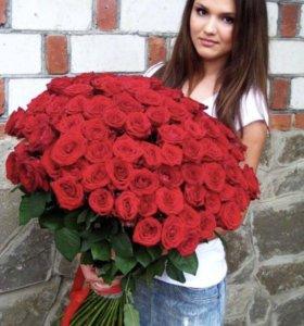 75 красных роз Голландия ❤️🔥