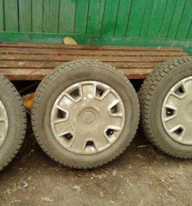Зимние шипованные колеса Данлоп
