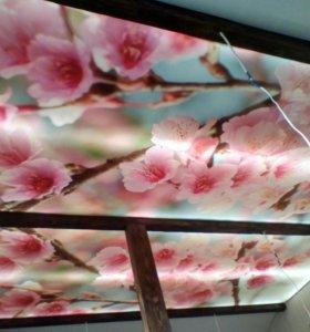 Фотопечать, натяжной потолок