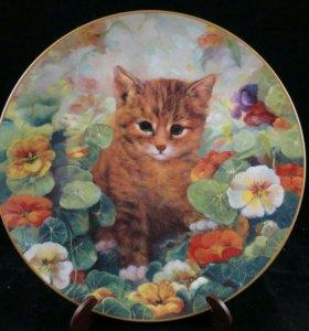 Тарелка Кошки в Саду Цветы Фриц Довольно Застенчив