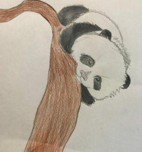 Рисунок:панда